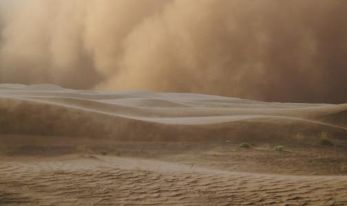 Петербургский пульмонолог: Надвигающееся облако пыли из Сахары вряд ли опаснее для здоровья, чем обещанный снегопад