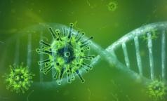 В ВОЗ оценили африканский штамм коронавируса и сделали неутешительные выводы