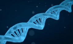 "Ученый разъяснил, как влияет ""неандертальский"" ген на течение ковида"