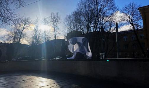 Создательница Стены памяти медиков попросит президента отправить Александра Беглова в отставку