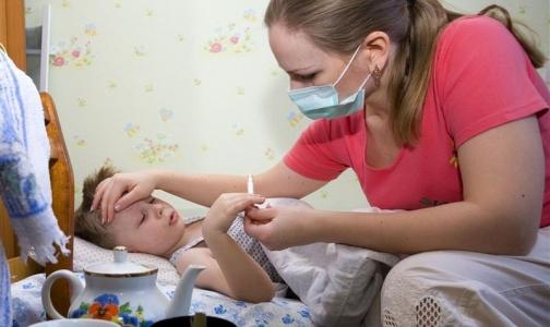 До конца года эпидемии гриппа не будет