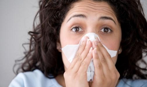 Эпидемию гриппа в Петербурге ждут в конце декабря