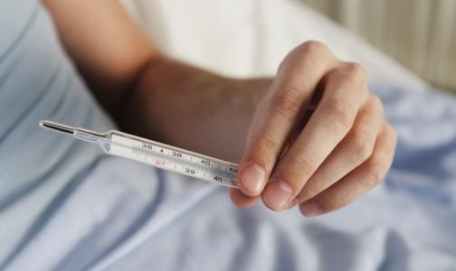 «Свиной грипп» выявлен у 93% заболевших петербуржцев
