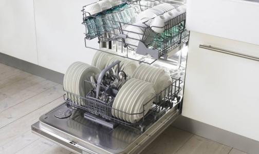 В посудомоечных машинах нашли грибы