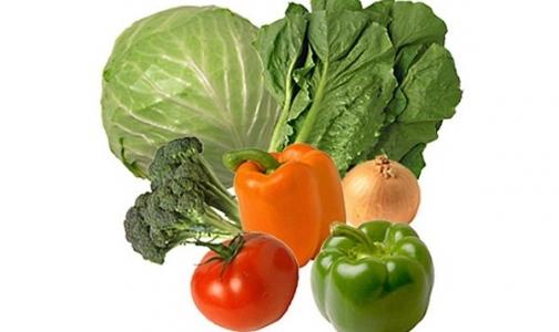 Роспотребнадзор пустил в Россию бельгийские и голландские овощи