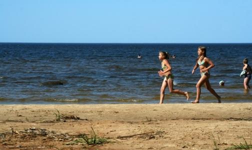 В Ленобласти можно купаться только на 16 безопасных пляжах