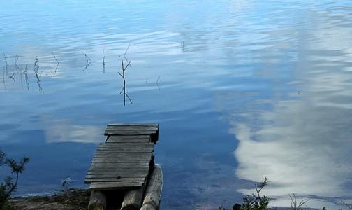 Купаться в водоемах Ленобласти запрещено