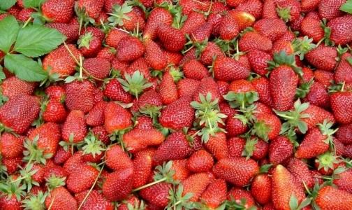 Роспотребнадзор изымает ягоды, закупленные в ЕС