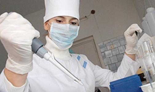 Онищенко заподозрил украинцев в недооценке вспышки холеры