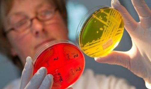 300 немцев заразились кишечной инфекцией