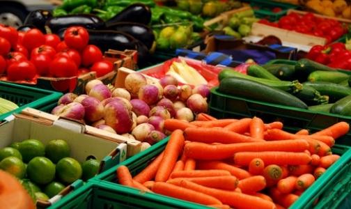 Европейские овощи вернулись на российский рынок