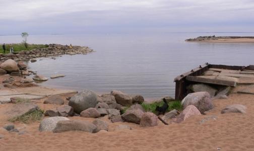 Вещество, найденное в Финском заливе - не порох