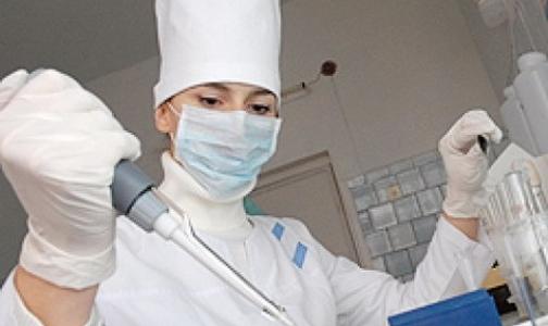 Поиски украинской холеры продолжаются