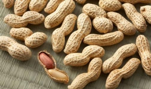 Арахис больше не опасен для аллергиков