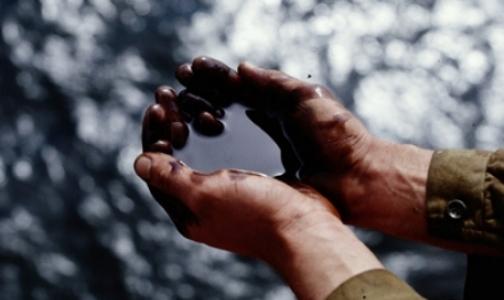 «Водные дворники» собрали 300 кг нефти в устье Малой Невы
