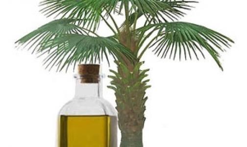 Как влияет на наш организм пальмовое масло, которое сейчас активно добавляют в продукты
