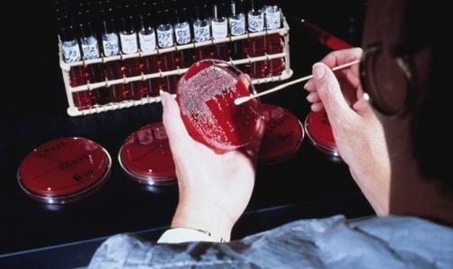 Вместо гриппа петербуржцы заражаются кишечными инфекциями и брюшным тифом