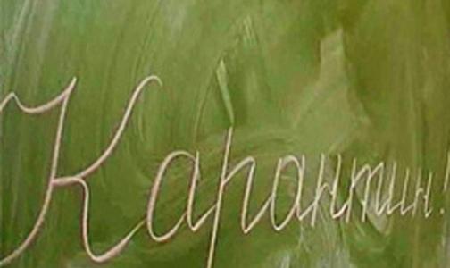 Школа в Ломоносовском районе закрыта на карантин по кори