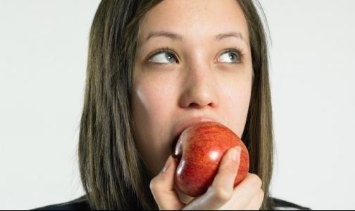 Как будут питаться петербургские школьники