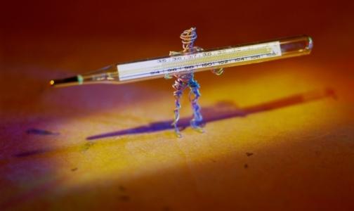Отпуск в экзотических странах может закончиться птичьим гриппом