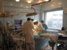 Больнице святителя Луки пообещали здание и кровати: Фоторепортаж