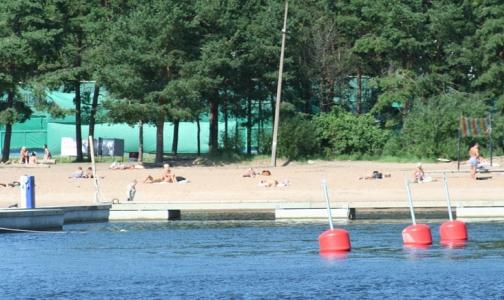 В Петербурге гибнет один из тысячи купальщиков