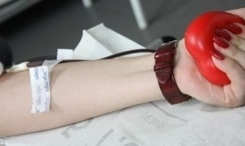 Кто такой donor sapiens и как стать донором
