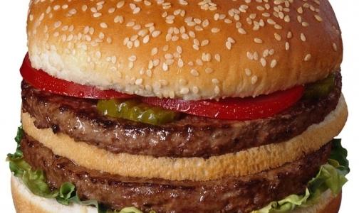 Онищенко объявил войну гамбургерам
