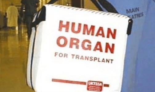 Минздрав готовит закон, разрешающий трансплантацию детских органов