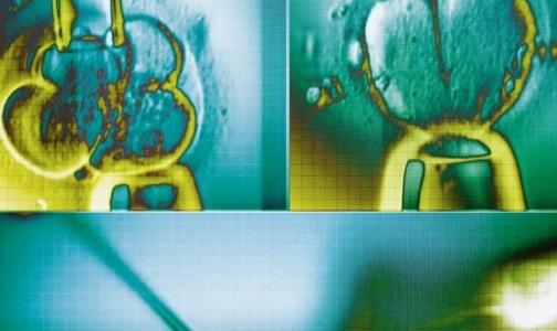 Лауретами Нобелевской премии по медицине стали исследователи стволовых клеток