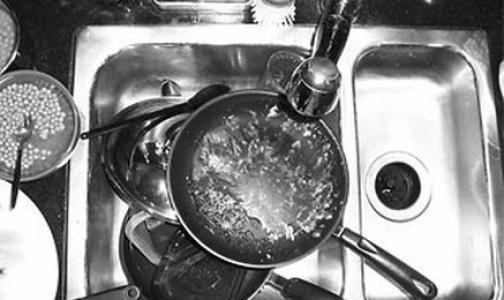 Сальмонеллезом студентов Горного университета заразила мойщица посуды