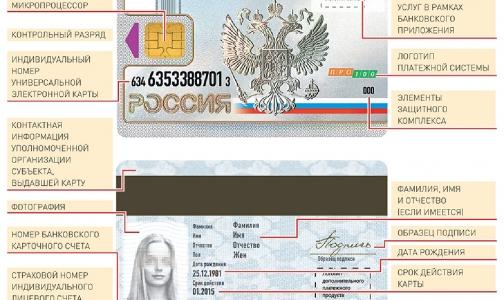 C 1 января в Петербурге начнут выдавать универсальные карты вместо полиса ОМС и пенсионного свидетельства