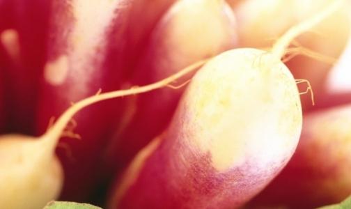 10 самых полезных «зимних» овощей и фруктов