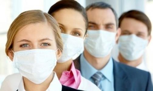 Треть россиян ожидают эпидемию в 2013 году