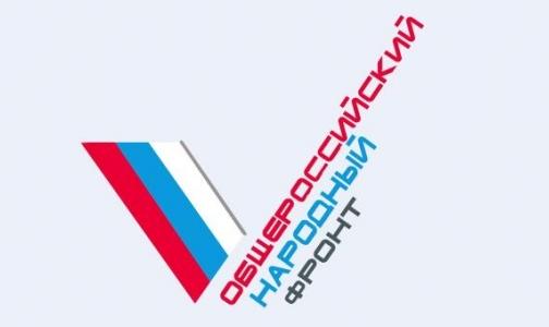 Сергей Багненко возглавил оргкомитет Общероссийского народного фронта в Петербурге