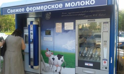 Надзорные органы Петербурга выясняют причину вспышки кишечной инфекции