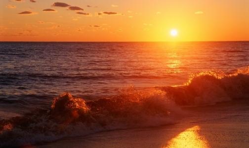 Четверо петербуржцев утонули в городских водоемах за три летних дня