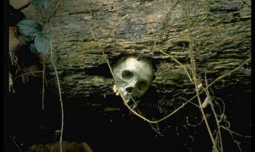 Неандертальцы тоже страдали от рака, выяснили ученые