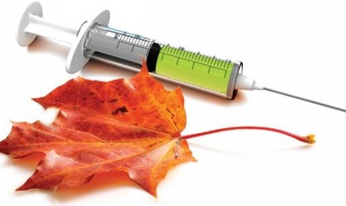 В России начали производить вакцины против гриппа-2013/2014