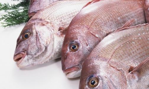 Морская рыба оказалась опасной для мужчин