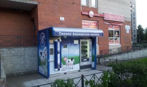Молокоматы, закрытые в июне Роспотребнадзором, вновь появились в Петербурге