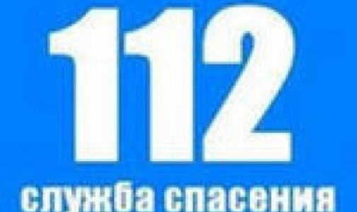 Вызвать «Скорую» по телефону «112» с городского номера в Петербурге можно будет не раньше 2014 года