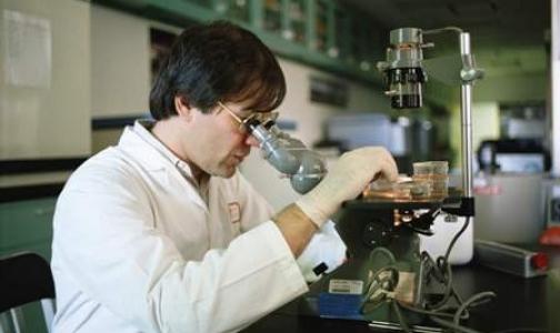 Российских ученых наградили аналогом Нобелевской премии за нанотранспортер для лекарств