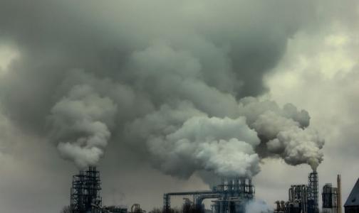 В Петербурге за 300 млн руб обещают сжечь все медицинские отходы