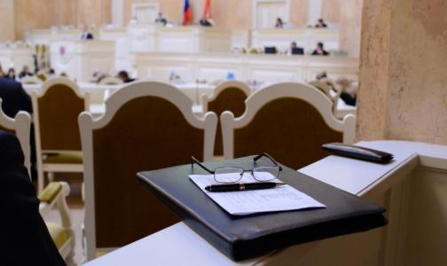 В петербургском ЗакСе обсудили запрет бесплатных абортов