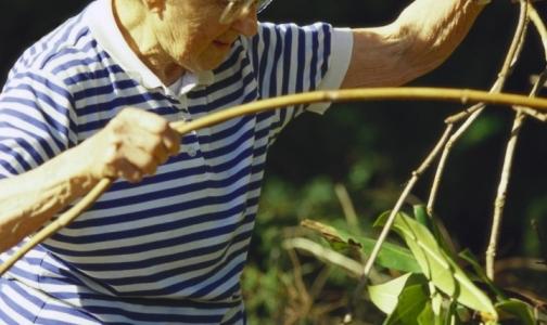 Эксперты считают, что все россияне могут жить до 100 лет