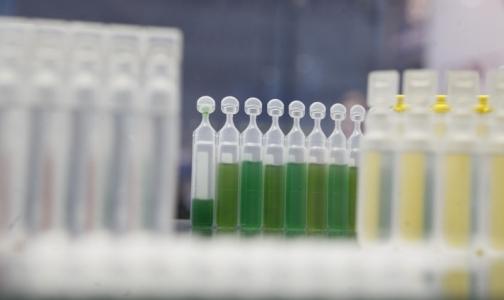 Россияне смогут за 2 минуты распознать поддельное лекарство