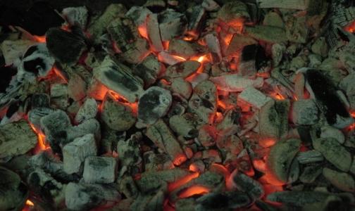 5 петербуржцев получили серьезные ожоги на шашлыках