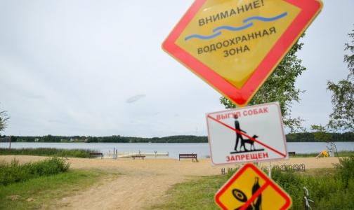 Роспотребнадзор назвал самые чистые из грязных водоемов Петербурга