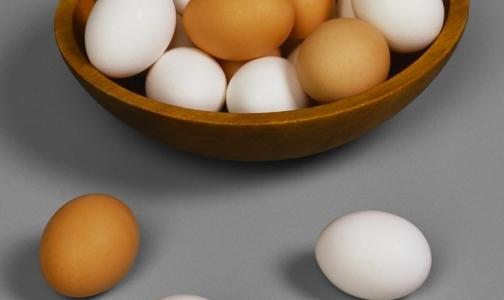 Роспотребнадзор советует россиянам не есть яйца за границей из-за сальмонеллеза